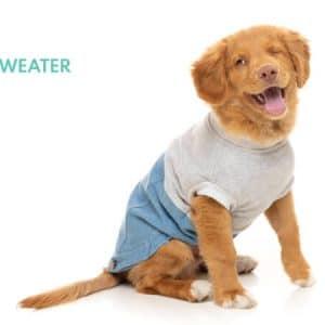 Kolekcija Sweater
